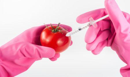 """Zelená pro GMO v """"českém jídelníčku"""" (?)"""